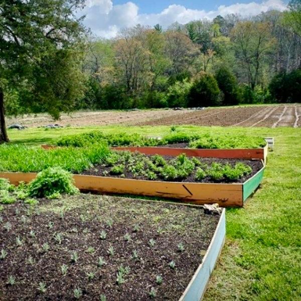Bellair Farm